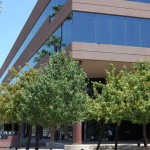Central Phoenix office space for rent in Arizona
